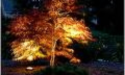 landscapelight-3
