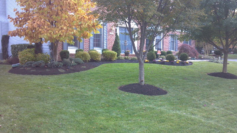Maryland Landscape Contractor