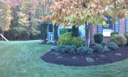 landscaping-12