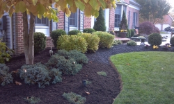 landscaping-13